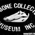 【遊ぶ】滅多にお目にかかることができない貴重な生物の骨格標本展示 – D'BONE COLLECTOR MUSEUM INC.