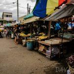 【News】フィリピン米価下落、ダバオでも悲痛な叫び