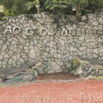 【Crocodile Park】ワニだけじゃない!誰もが楽しめるエンターテーメント動物園