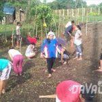 【News】台湾の投資家、ダバオ市の農業ベンチャーに興味を示す