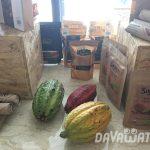 【News】ダバオ農業省、アグリビジネスの起業家への予算増額を提案