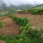 【News】広がるエルニーニョの被害、灌漑設備の必要性高まる