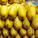 【News】ダバオの新名産!?サマル島の甘いマンゴージャム