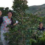 【News】ミンダナオ産コーヒー豆が日本のメディアで注目される